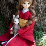 Doll meet-27