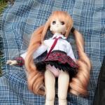 Doll meet-34