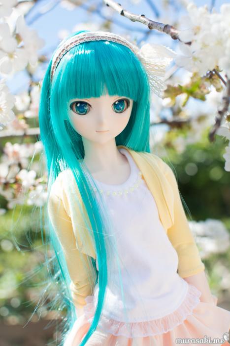 miku spring-2